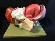Somso Birth - Second Stage Pregnancy Stage Of Birth Anatomical Model Ms45/2