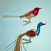 German Glass Christmas Bird Clip On Ornaments Feather Tails Set Of Two