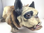 Beautiful 1890and039s French Bull Dog Growler Nodder Paper Mache Pull Toy