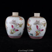 A Pair Collection Old China Antique Qing Dynasty Pastel Butterfly Pattern Jar