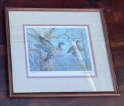 Framed Ned Smith Waterfowl Print Seen In 1983 Pennsylvania State Stamp