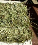 Great Fresh Timothy Hay Great For Rabbits Guinea Pigs Get 2 Bales Get 6 Lbs