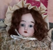 Antique 13 Inch Cuno Otto And Dressel Doll In Pretty Watered Green Print...