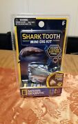 New National Geographic Stem Shark Tooth Mini Dig Kit Genuine Fossil
