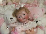 Antique Bisque Baby Doll 20 Brown Glass Eyes Mohair Wig Silk Christening Gown
