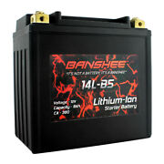 Banshee Lithium Ion Factory Sealed Powersports Battery Replaces Mmg Ytx14l-bs
