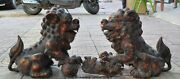 Old Chinese Palace Bronze Gilt Evil Foo Dog Lion Guardian Beast Ball Statue Pair
