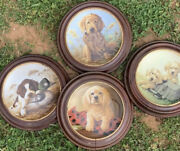 Edwin Knowles Collector Plate Lot 4 Piece Puppies- Framed- Vgc