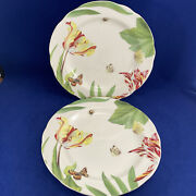 Spode Floral Haven Dinner Plates Lot Of 2 Floral Leaves Butterflies 10.25 In