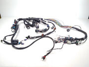 Indian Motorcycle Chassis Harness 7 In Genuine Oem Part 2413259 Qty 1