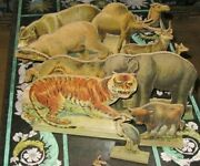 Rare Antique Set 9 Raphael Tuck Wooden Lithograph Animals Elephant Wolf Stork