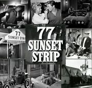 77 Sunset Strip Complete Series On Dvd All 206 Episodes Finest Quality Available