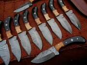 10 Inches Lot 10 Custom Made Damascus Hunting Skinner Knives With Leather Sheath
