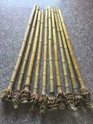 3-4cm1.18-1.57bamboo Root Ends/tips Polished For Pipemaker Wholesale Amount