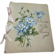 Antique Pressed Plant Flower Collection Booklet Colorado Wild Flowers Handmade