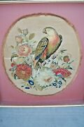 Antique Victorian French Embroidery Stumpwork Parrot Museum Quality 33
