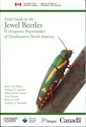Field Guide To The Jewel Beetles Coleoptera Buprestidae Of Northeastern Nor..
