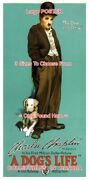 A Dog's Life 1918 Charlie Chaplin Tramp = Poster 3 Sizes 4 Ft / 6 Ft / 7 Ft