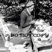 Reproduction 8x10 Photo Print Of Famed Duck Goose Decoy Carver Joe Lincoln 2