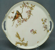 Continental Hand Painted Aesthetic Birds Butterfly Flowers Gold Blush Ivory Tray