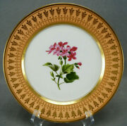 Dagoty And Ed Honore Old Paris Hand Painted Pink Floral Apricot And Gold Plate A