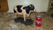 Vintage Dairy Cow On Wheels Pull Toy Cast Iron Wheels