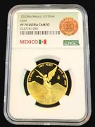 2020 Mexico Gold Libertad 1/2 Onza Ngc Pf 70 Ultra Cameo Rare Only 250 Minted