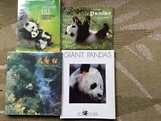 Four Books About Panda Bears Beautifully Illustrated