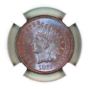 1876 Ms64 Bn Ngc Indian Head Penny Premium Quality Superb Eye-appeal