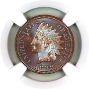 1889 Pf65 Bn Ngc Indian Head Penny Proof Example Superb Eye-appeal