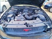 Driver Left Front Door Electric Coupe Fits 05-09 Mustang 5572779