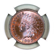 1883 Ms66 Rb Ngc Indian Head Penny Premium Quality Superb Eye-appeal