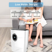 Us Plug Dehumidifier With Drain Hose 1.2l Water Tank For Kitchen Bathroom