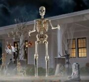 12 Foot Ft Giant Skeleton W/ Animated Lcd Eyes Halloween Sold Out New In Box