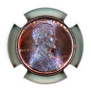 1909 Vdb Ms65 Bn Ngc Lincoln Wheat Penny Registry Quality Collection