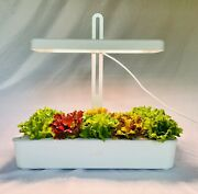 Hydroponic System Grow Kit With 10 Plant Sites, 20 Watts And Adjustable Height.