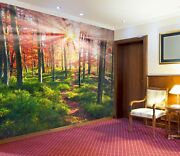 3d Beeches The Rocks Zhu3309 Wallpaper Wall Mural Removable Self-adhesive Zoe