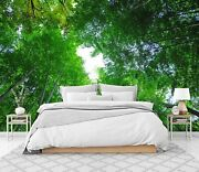 3d Forest White Clouds Zhu6456 Wallpaper Wall Mural Removable Self-adhesive Zoe