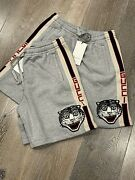 Brand New Angry Cat Tiger Stripe Cotton Track Shorts Sizes Xs