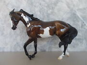 2012 Peter Stone Curacao Glossy Bay Pinto Fcm Thoroughbred Le 10