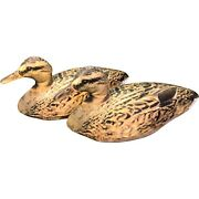 Featherlite Inflatable Brown Mallard Duck Decoys By Cherokee Sports Set Of 2