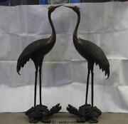 China Bronze Copper Feng Shui Red-crowned Crane On Dragon Turtle Tortoise Pair