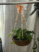 College Football Beaded Wire Plant Hangers