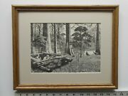 Aiden Lassell Ripley Turkey Blind Framed 11x14 Etching Reproduction 5.75 771