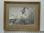 Aiden Lassell Ripley Lone Woodcock Framed 11x14 Etching Reproduction