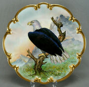 Tirschenreuth Artist Signed C Koenig Hand Painted Bald Eagle And Gold Charger