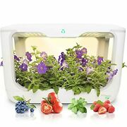 Hydroponics Growing System With Grow Lights For Indoor Herb Garden Design