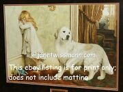 A/p Art Painting Print Great Pyrenees Dog Sheep Pyrenean Mountain Dog Biscuit