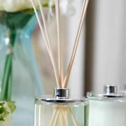 8pcs/pack Home Fragrance Oil Diffuser Natural Reed Party Incense Replacement Rat