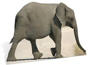 Baby Elephant Lifesize Cardboard Cutout Fun Figure 114cm Tall - For Your Party